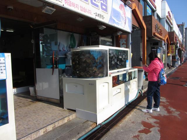 korea-southern-6841