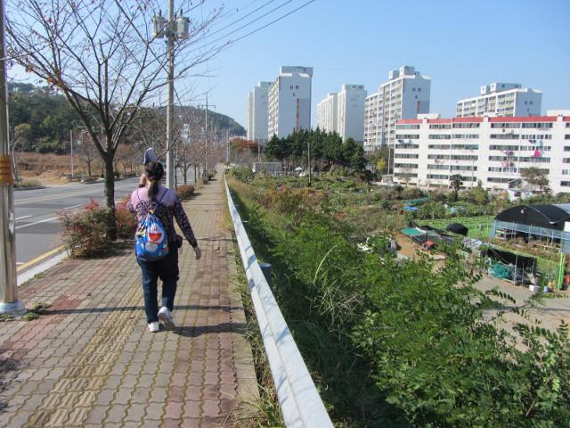 korea-southern-7070