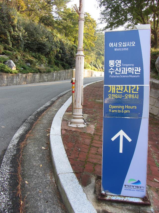 korea-southern-7124