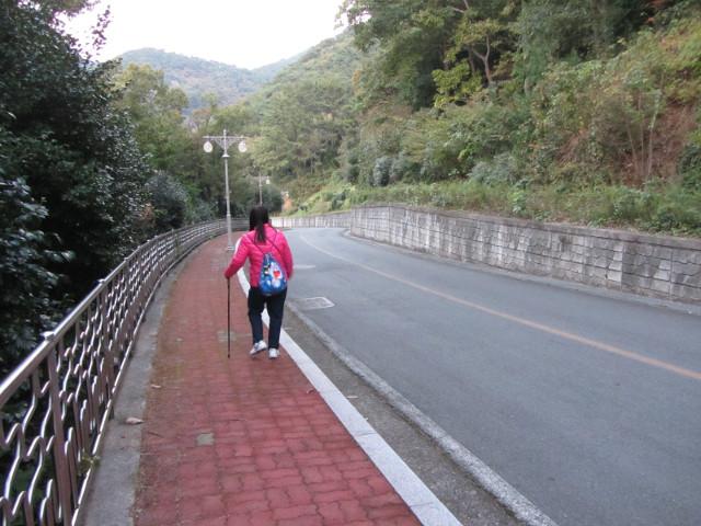 korea-southern-7258