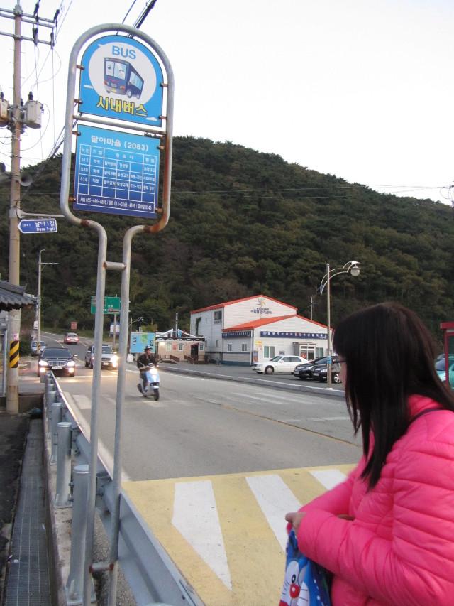 korea-southern-7263