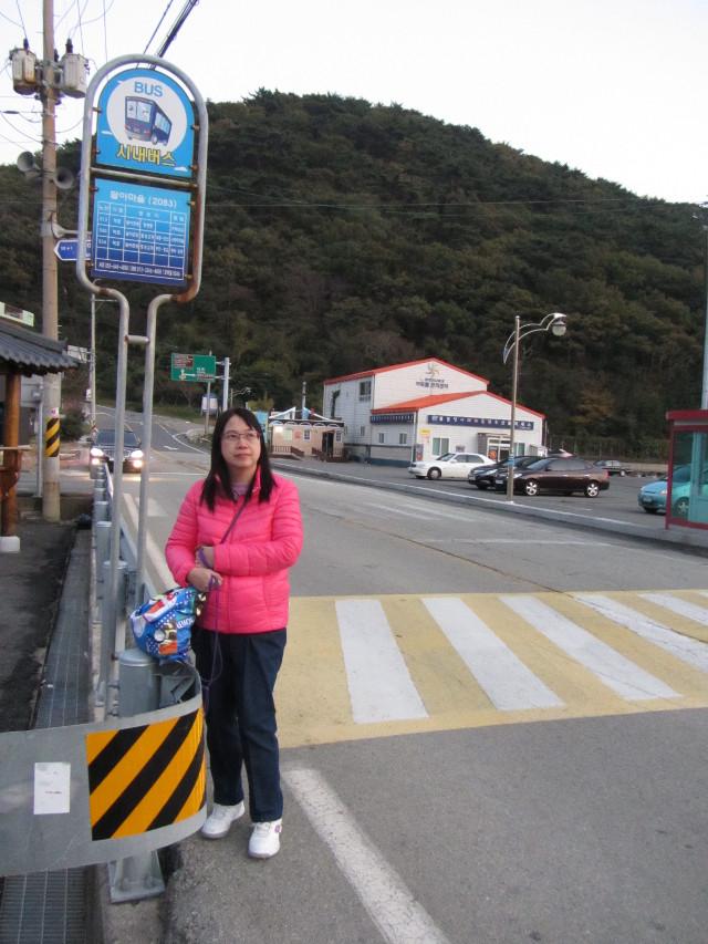 korea-southern-7265