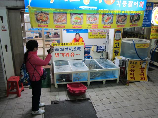 korea-southern-7273