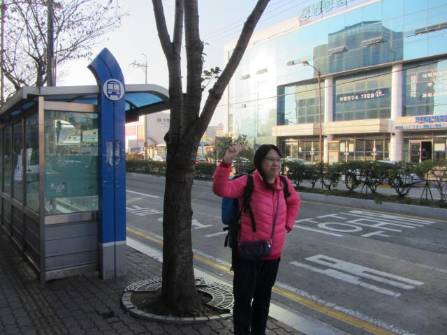 korea-southern-7306