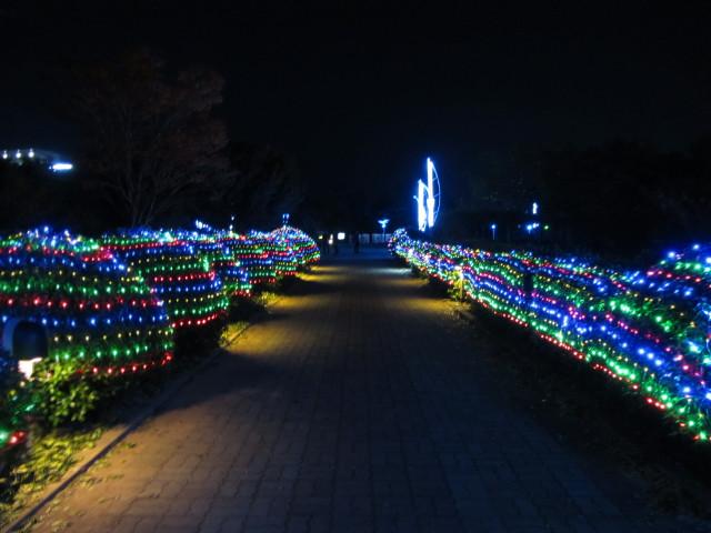 korea-southern-7616