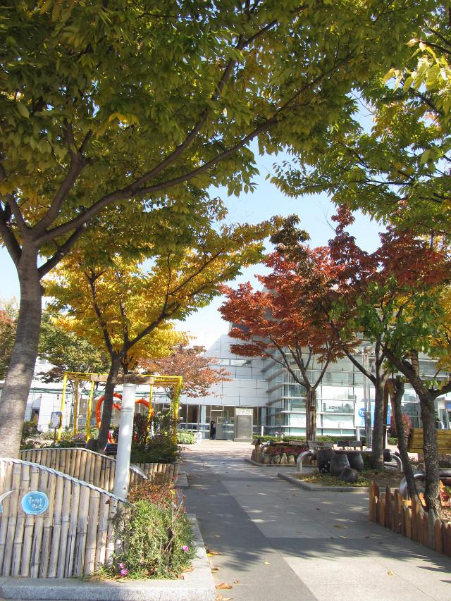 korea-southern-8169