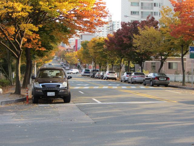 korea-southern-8335