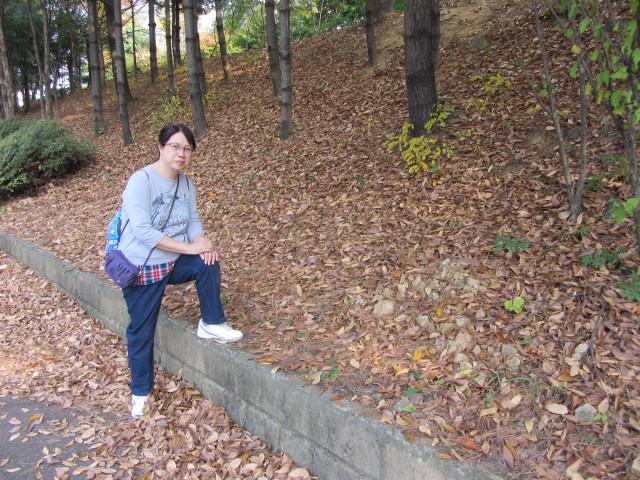korea-southern-8340