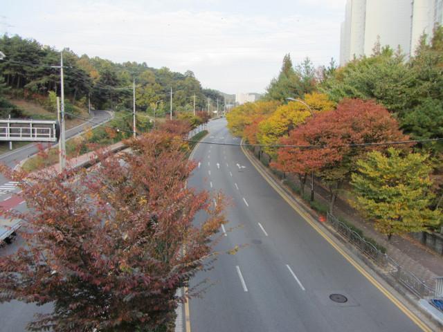 korea-southern-8348