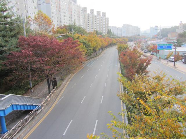 korea-southern-8349