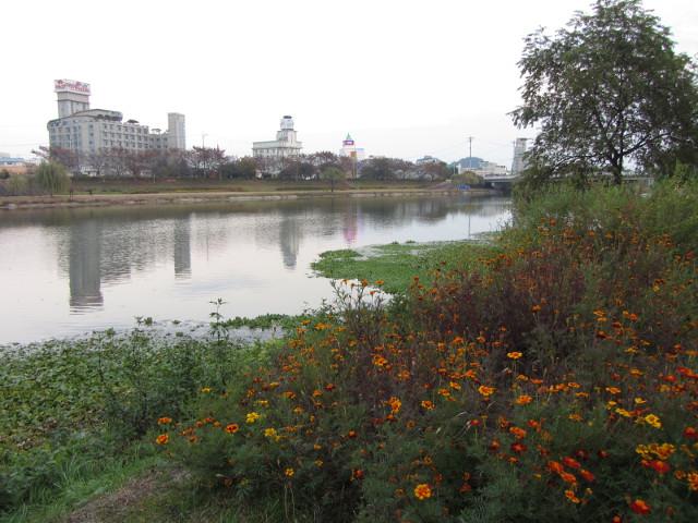 korea-southern-8372