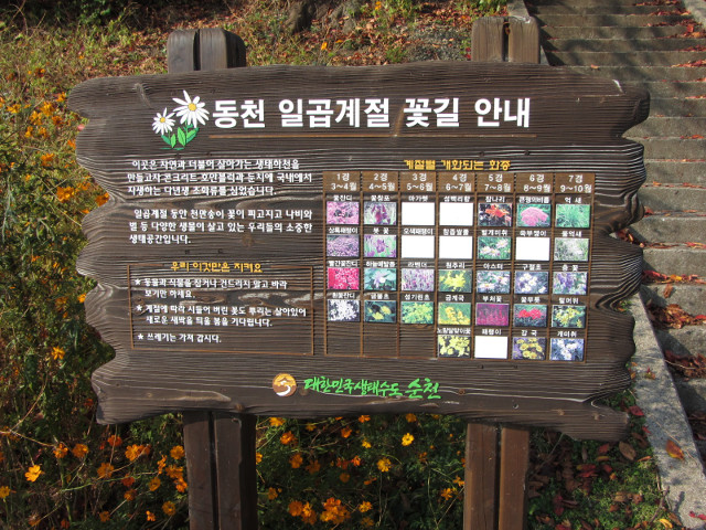 korea-southern-8426