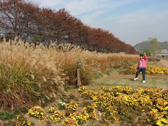 korea-southern-8442
