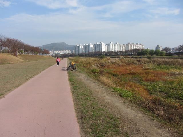 korea-southern-8465