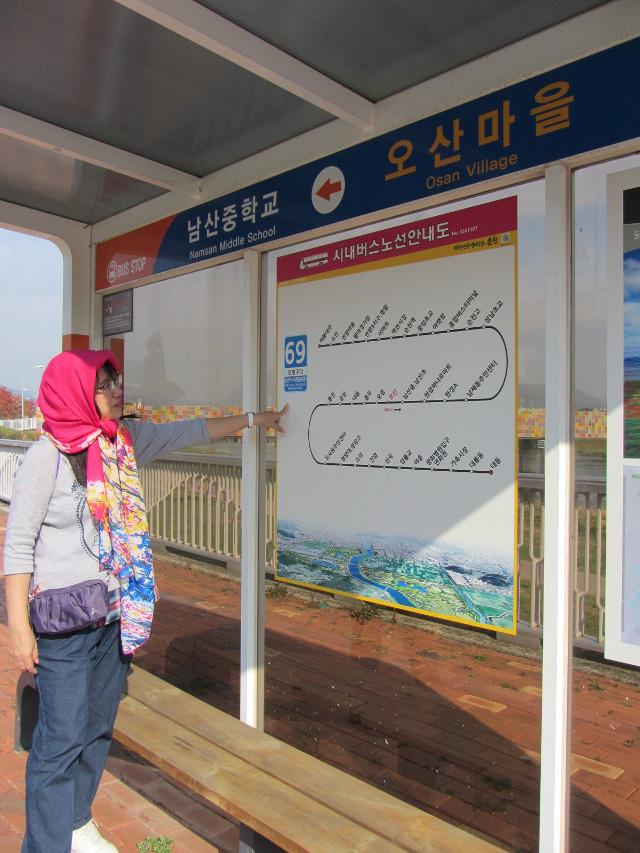 korea-southern-8492