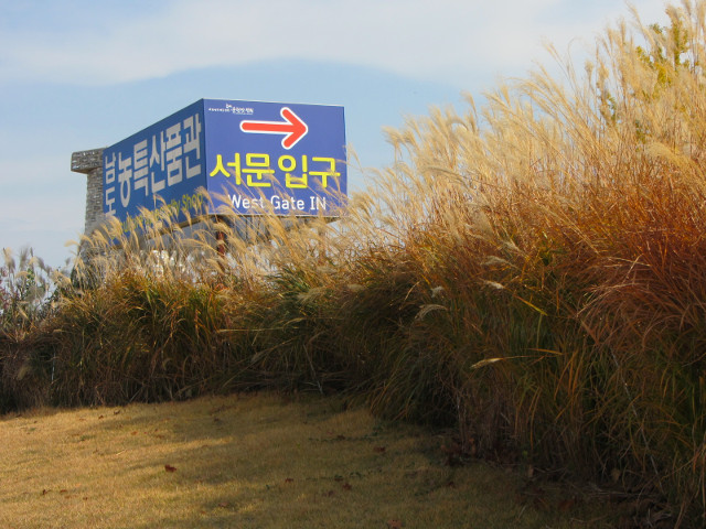 korea-southern-8507