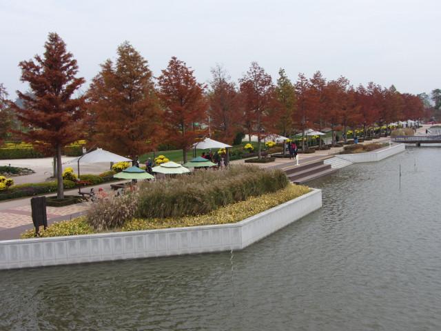 korea-southern-8579
