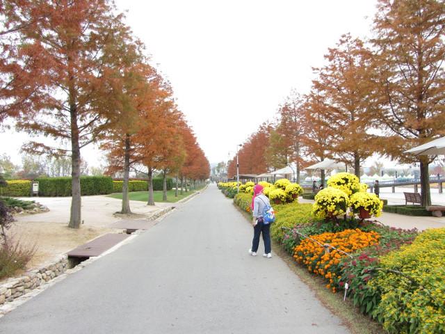 korea-southern-8589