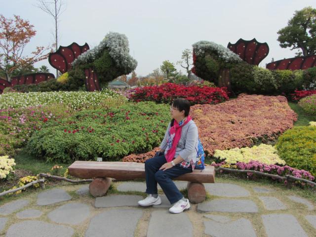 korea-southern-8636