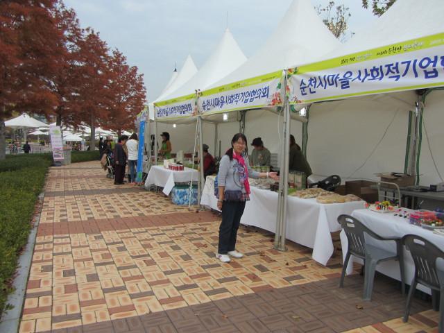 korea-southern-8639