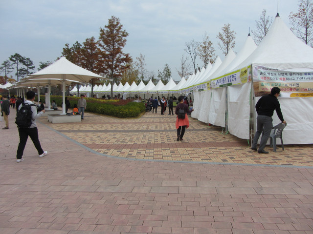 korea-southern-8640