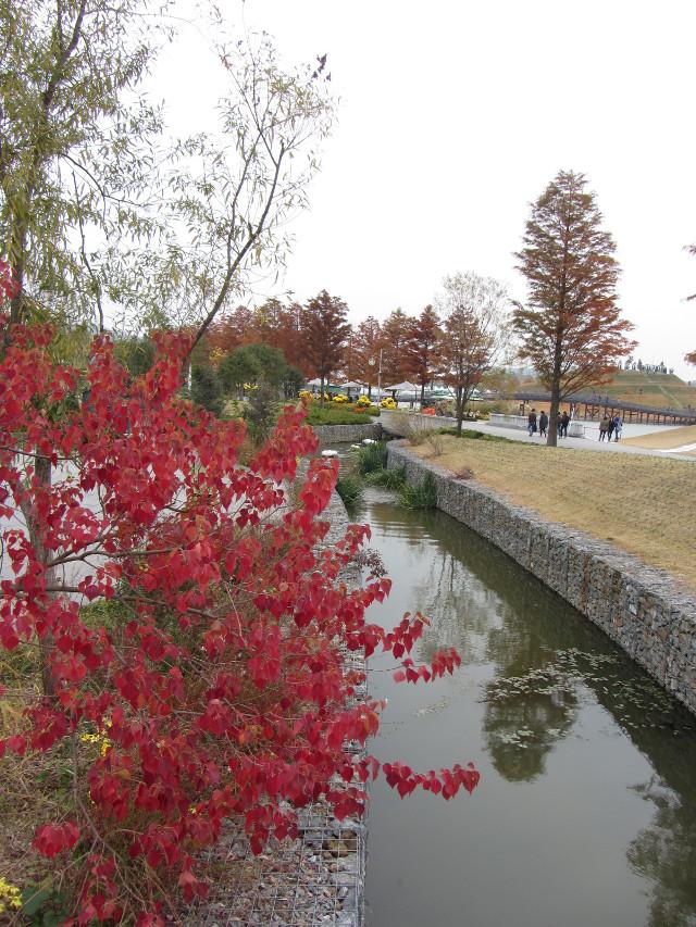 korea-southern-8652
