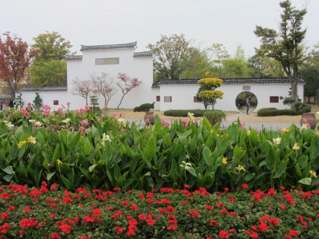 korea-southern-8669
