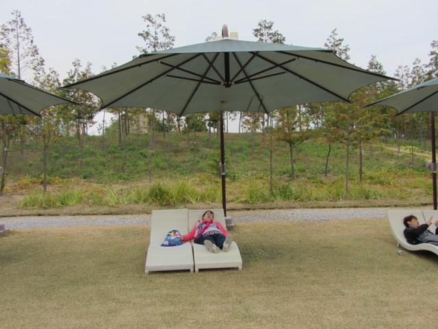 korea-southern-8670