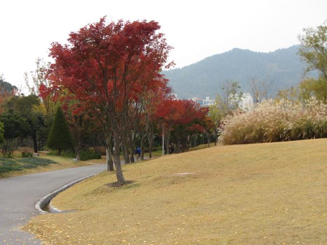 korea-southern-8701