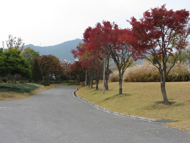 korea-southern-8702