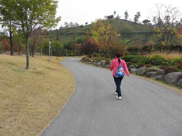 korea-southern-8705
