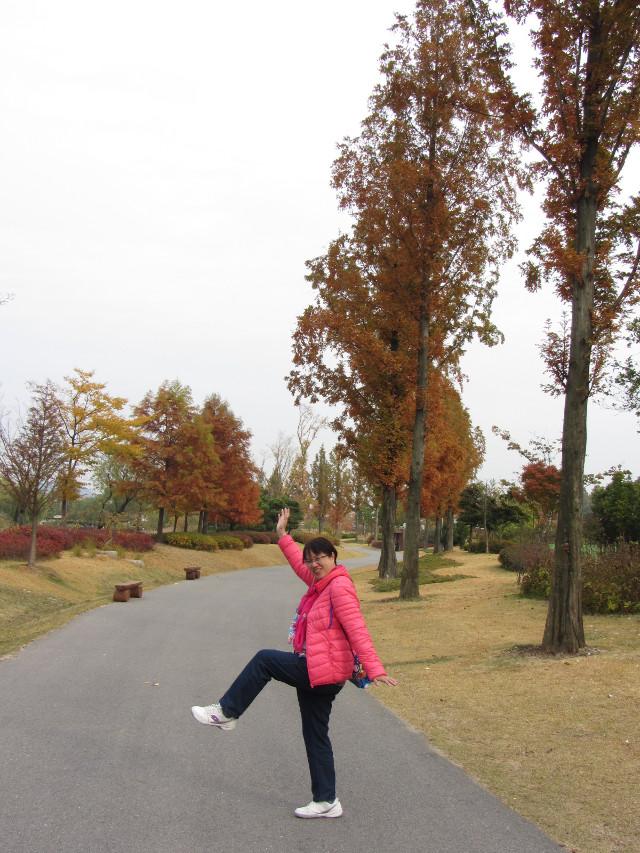 korea-southern-8709