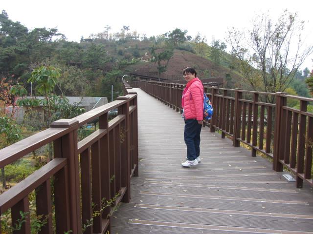 korea-southern-8713