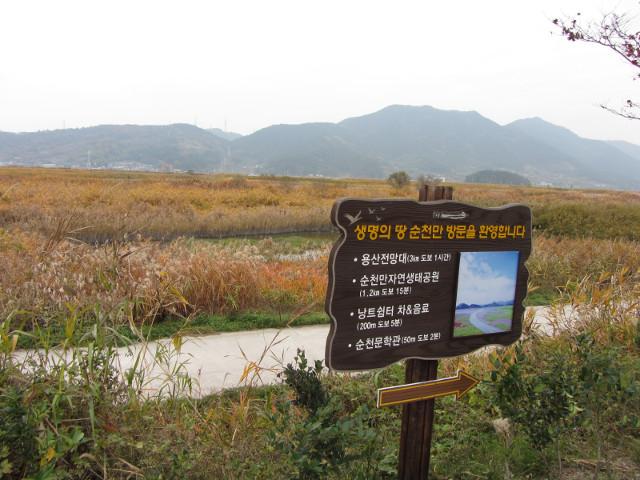 korea-southern-8732