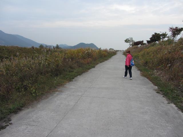 korea-southern-8740