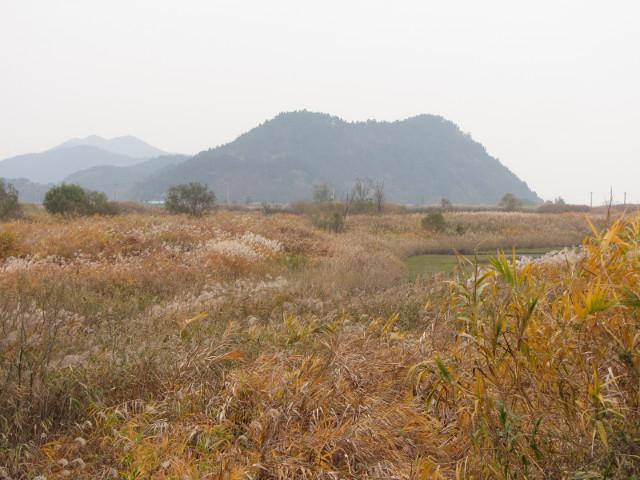 korea-southern-8742