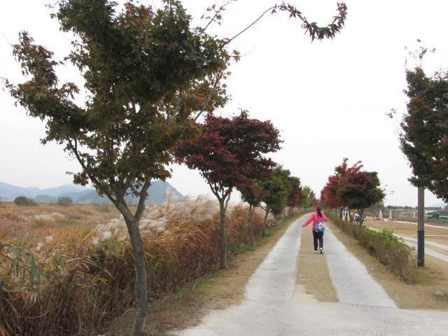 korea-southern-8743