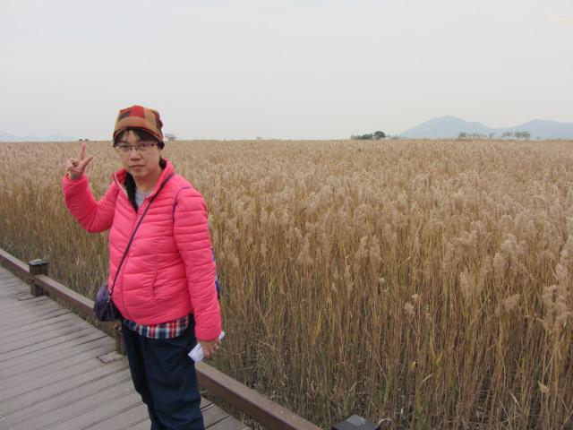 korea-southern-8779