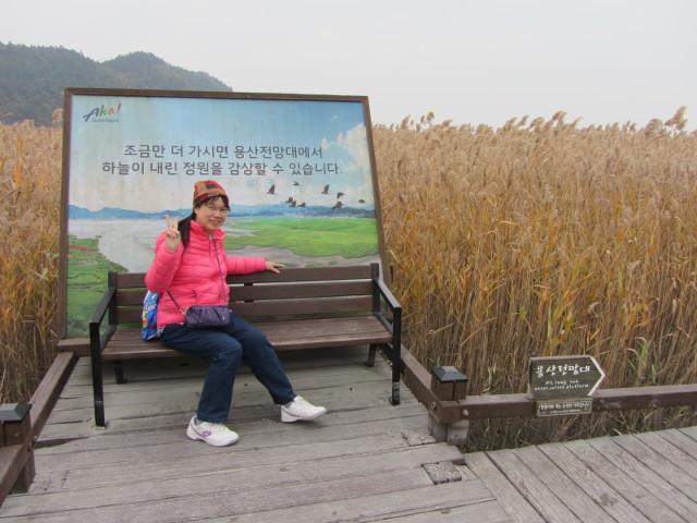 korea-southern-8783