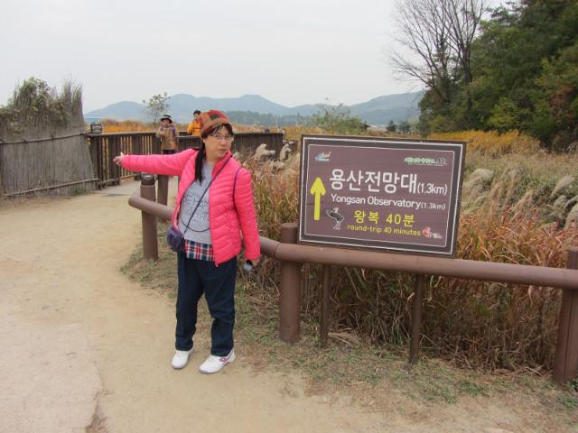 korea-southern-8800
