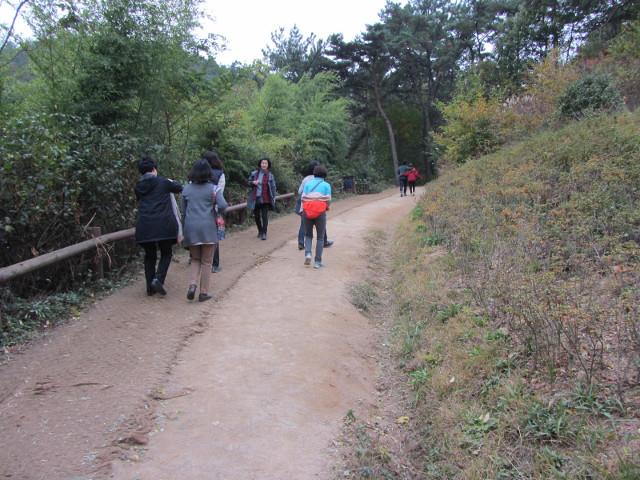 korea-southern-8805