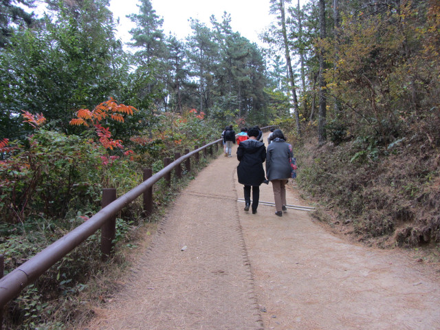 korea-southern-8807