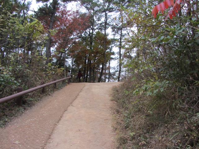 korea-southern-8808