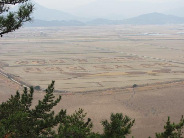 korea-southern-8812