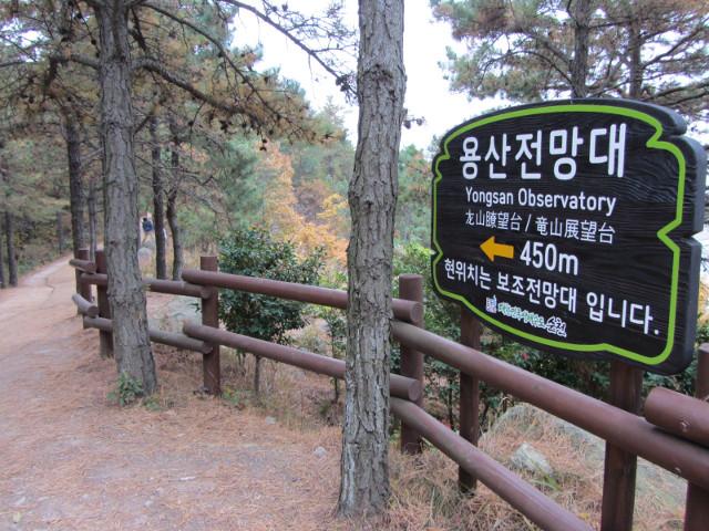 korea-southern-8823