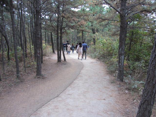 korea-southern-8834