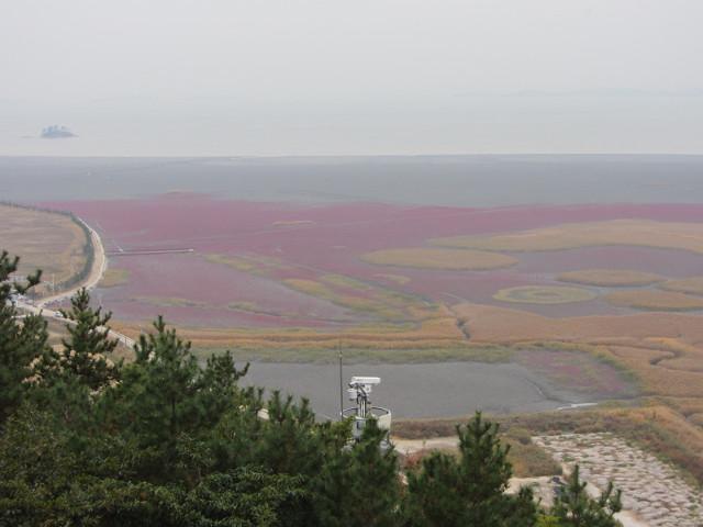 korea-southern-8845