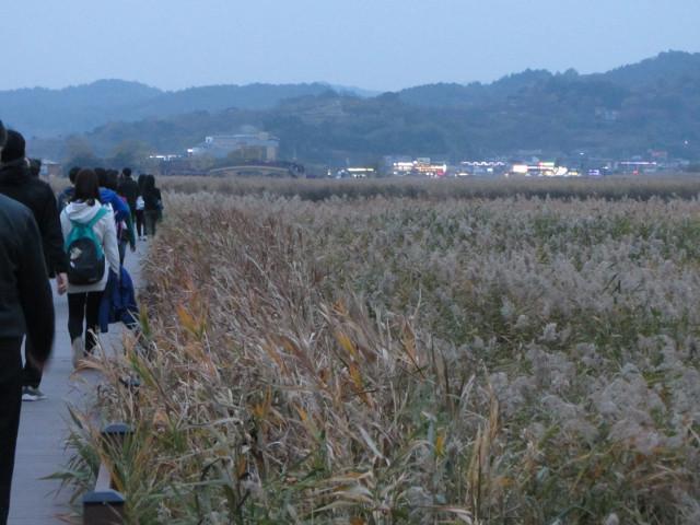 korea-southern-8874