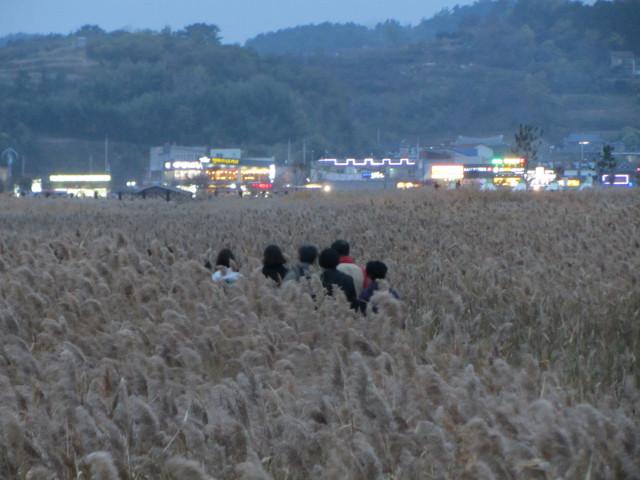 korea-southern-8877