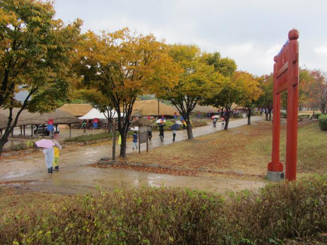 korea-southern-8907